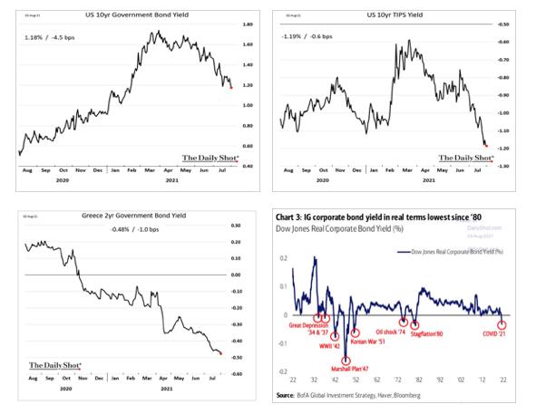 13-Government Inflation Linked Bonds (TIPS)